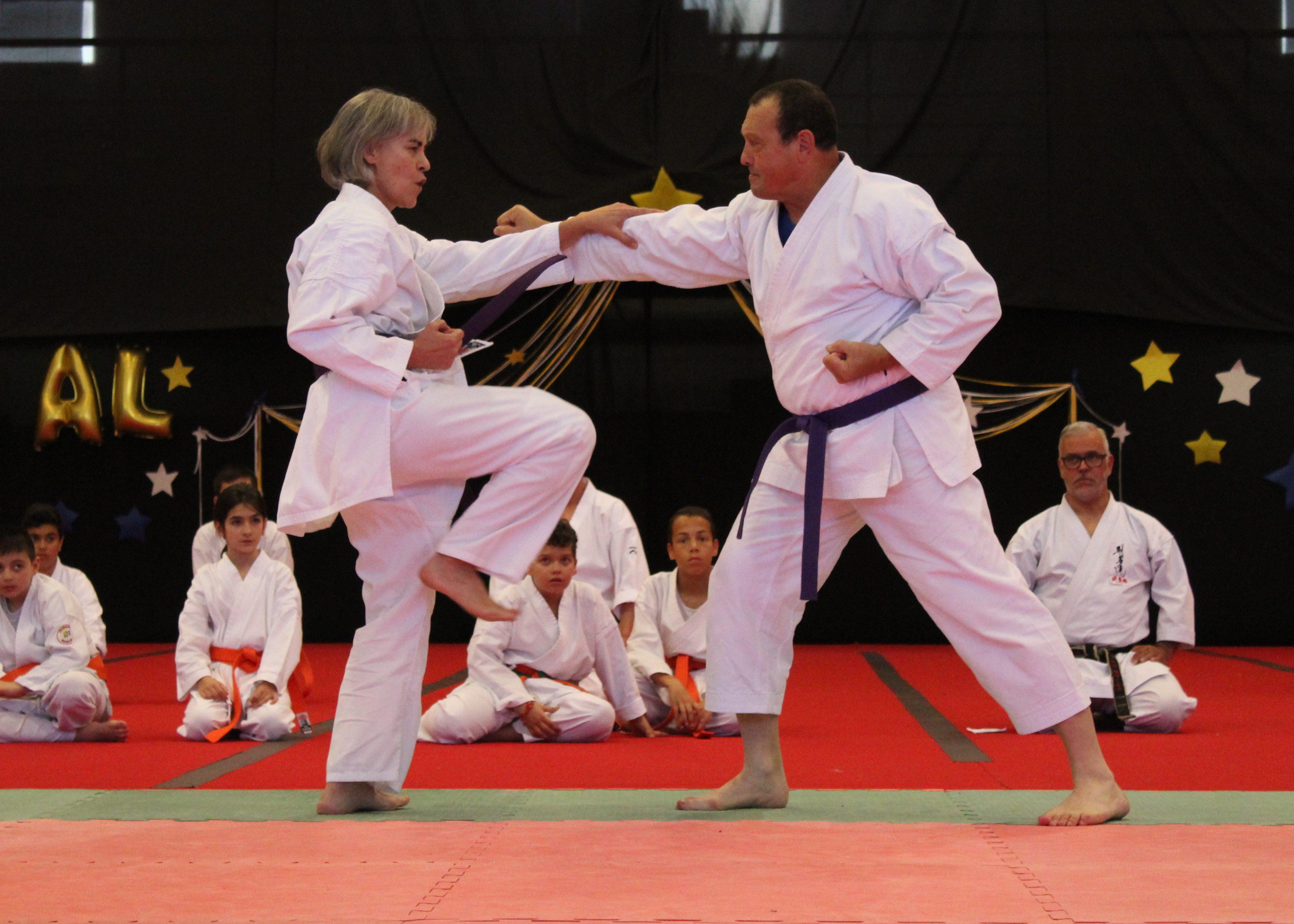 Karaté Goju Ryu